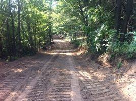 Uređenje šumskih putova