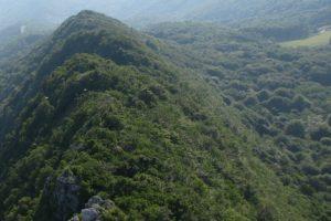 Održana javna rasprava o prijedlogu Programa gospodarenja šumama