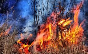 Vatrogasna obavijest – oprez kod spaljivanja biljnog otpada i trave!