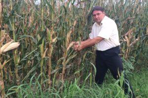 Poziv za podnošenje prijava šteta od elementarne nepogode suša na poljoprivredi
