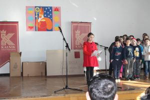 2017 nikola - 6